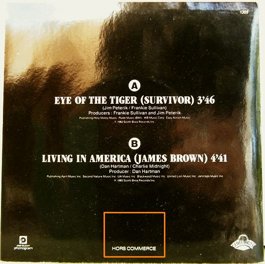 pochette verso Survivor-James Brown