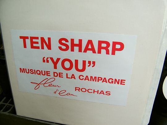 recto du maxi 45 tours White Label de Ten Sharp - You