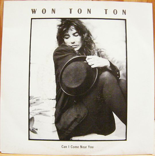 recto du 45t Collector promo de Won Ton Ton - Can I come near you